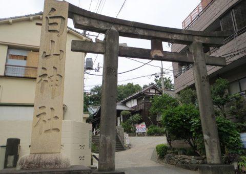 鳥居・社号標(東参道)