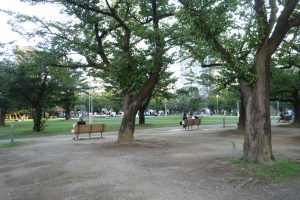 錦糸公園(園内)