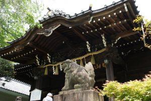 白山神社 社殿・狛犬