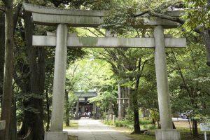 赤坂氷川神社 一の鳥居