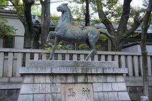 富岡八幡宮 神馬