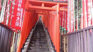 日枝神社 稲荷参道