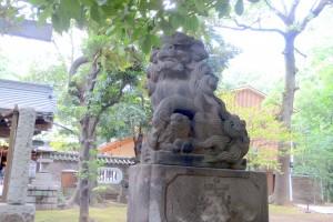 表参道 二の鳥居前 狛犬(吽)