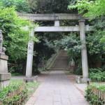 赤坂氷川神社には狛犬がいっぱい