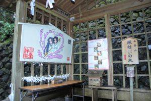 縁結びの木 納所