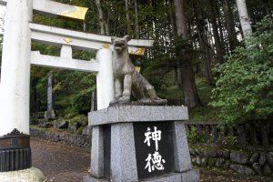 狛犬(狼) 三ツ鳥居(右)